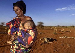 An 80-year-old woman cradles her malnourished grandson near Afder, southern Ethiopia. Photo George Mulala/IRIN
