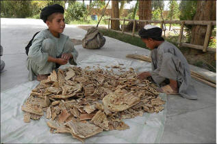 Food is scarce in Afghanistan.  Here two students at a mosque school in Kandahar sort pieces of dried naans, or unleavened bread, given to them by soldiers nearby. Photo: BBC