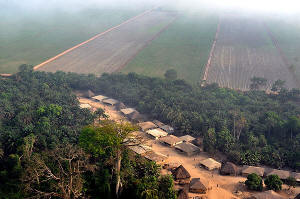 Aerial photo of the lands taken by Addax Bioenergy for its sugar cane plantation in Sierra Leone. Photo: Le Temps