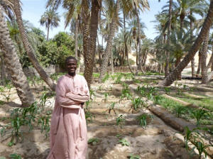 Photo of Sahelian farmer.  Supporting agricultural in ecologically fragile zones is key to people having enough income, thereby reducing the need for humanitarian aid. Photo: Anna Jefferys/IRIN