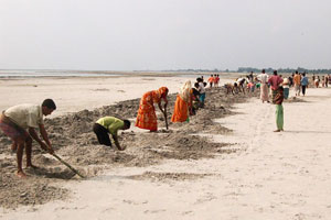 Farmers dig sand pits for growing pumpkins.  Photo: Practical Action Bangladesh