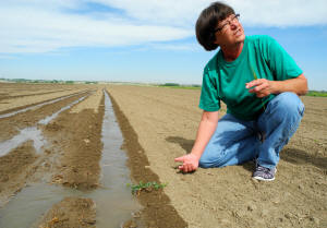 Anita Pointon shows where the water has to soak over to in order to reach a bed of corn seeds. The water  is still about 6 inches away.  Photo: Lydia DePillis/The Washington Post