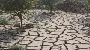Parched earth following a drought in northern Afghanistan. The region has been hit by increasingly unpredictable weather, with most experts agreeing it is an effect of climate change. Photo: Joe Dyke/IRIN