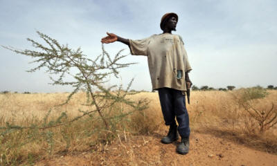 Smallholder farmers in Africa are struggling with the effects of climate change. Photo: ISSOUF SANOGO/AFP/Getty Images