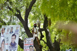 Indian farmer Gajendra Singh stands on a tree before committing suicide during an Aam Aadmi Party rally in New Delhi. Photo: Chandran Khanna/AFP/Getty Images