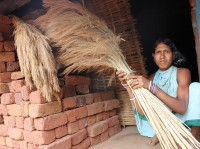 "A tribal woman with a  bundle of ""broom grass"" from the hill slopes of the Niyamgiri range in Odisha, India Photo: Manip;adma Jena/IPS"