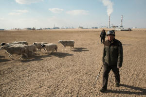 Inner Mongolian sheepherders, with alunminum smelter in the background. Photo: Gilles Sabrie/Washington Post