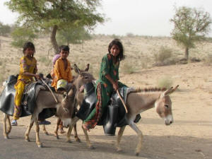 Three children on burros in the Tharparker region of Pakistan. Photo: Irfan Ahmed/IPS