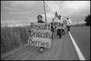 Farm workers and their supporters march to the office of Sakuma Farms, Burlington, Washington. Photo: David Bacon