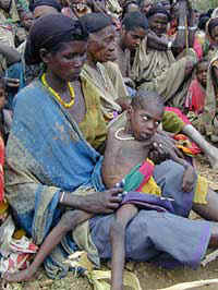World Hunger Notes -- 2002 / 2001 Article Archive