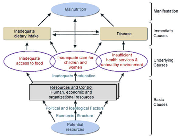 causes_of_malnutrition