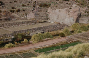 chile_terraces