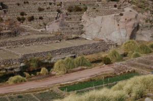 chile_terraces
