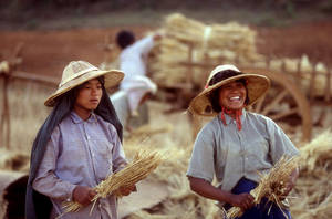myanmar_farmers