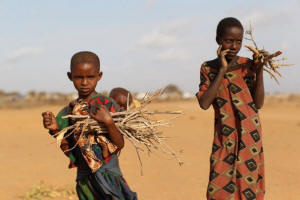 People Still Die from Hunger Whether We Call it a Famine
