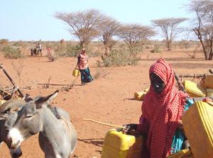 Conflict Has Put Ethiopia's Tigray Region on the Verge of Famine