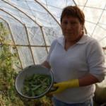 chile_woman_farmer