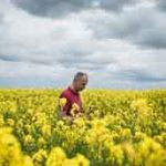Arnaud Rousseau, a sixth-generation farmer in France, in a field of rapeseed. Photo: Ed Alcock /The New York Times