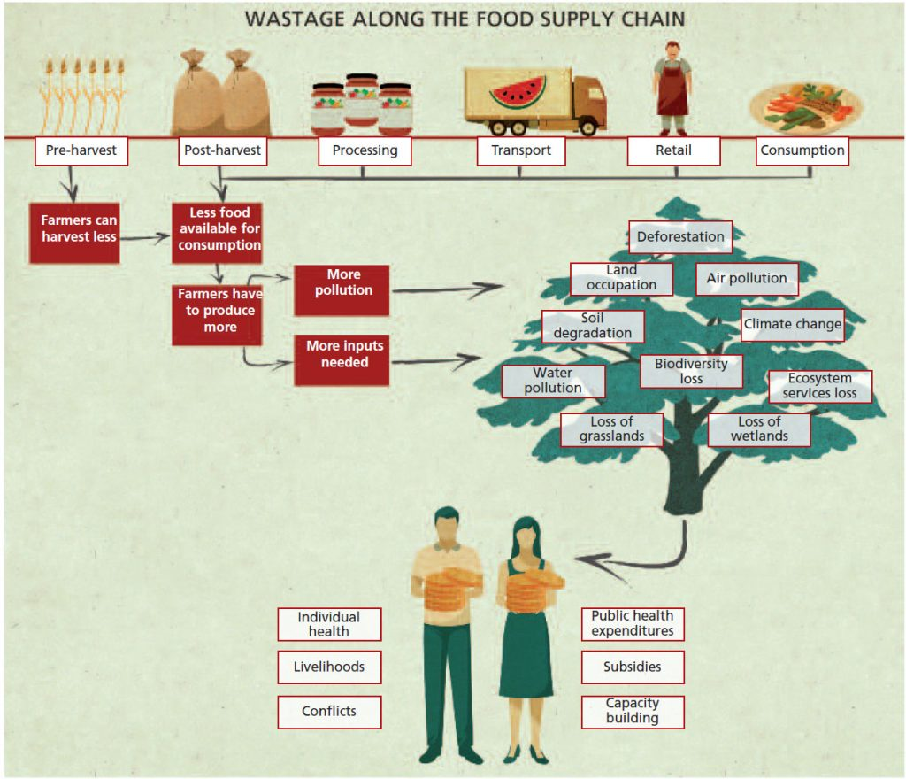 Food Loss and Waste in the United States and Worldwide - World