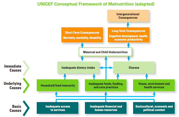 UNICEF Model of Malnutrition