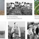 Normal Borlaug
